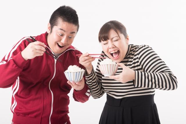 内臓脂肪型肥満の最大要因が、食べすぎと運動不足!?